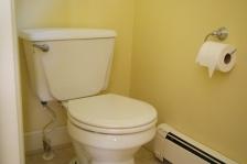 Before- Master Bath Toilet